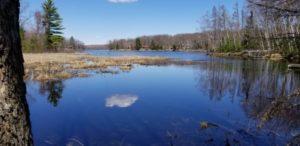 #2643 ENJOY!!!! Nelson Lake